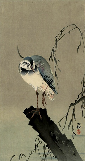 Ohara Koson (Shoson)  Lapwing on Tree Stump