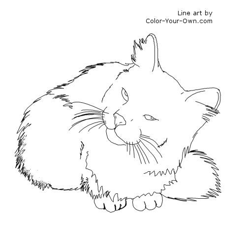 scratch21 coloring pages - photo#6
