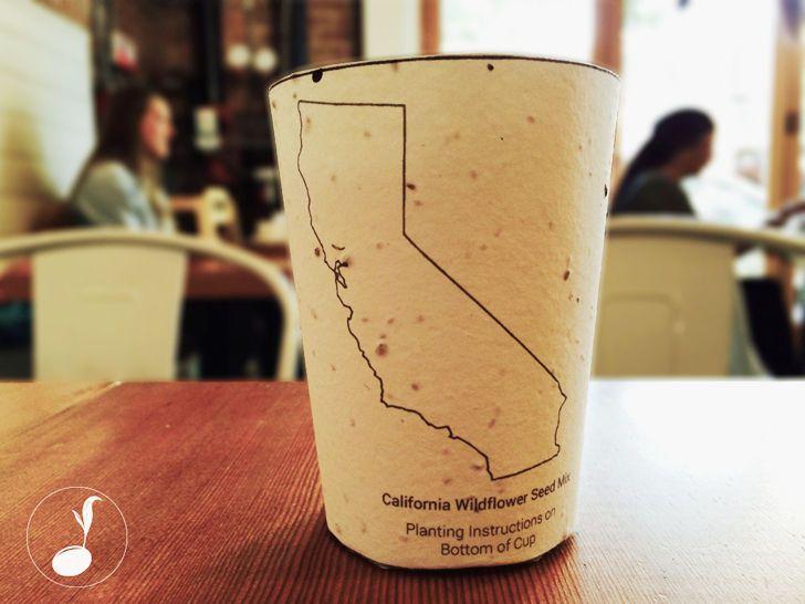 Una taza de café que tiene semillas locales incrustadas dentro de la taza que se utilizará para la reforestación de las comunidades locales.