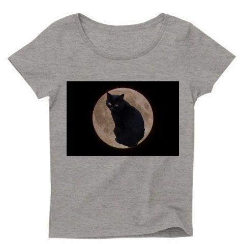 月のうさぎならぬ月の黒猫です、お団子食べたいですねヾ(*ΦωΦ)ノ