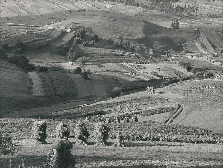 Martin Martinček - Žatva-1964