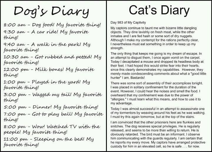 Peanut's Diary: Cats, Dogs, So True, Funny Stuff, Diaries, Animal
