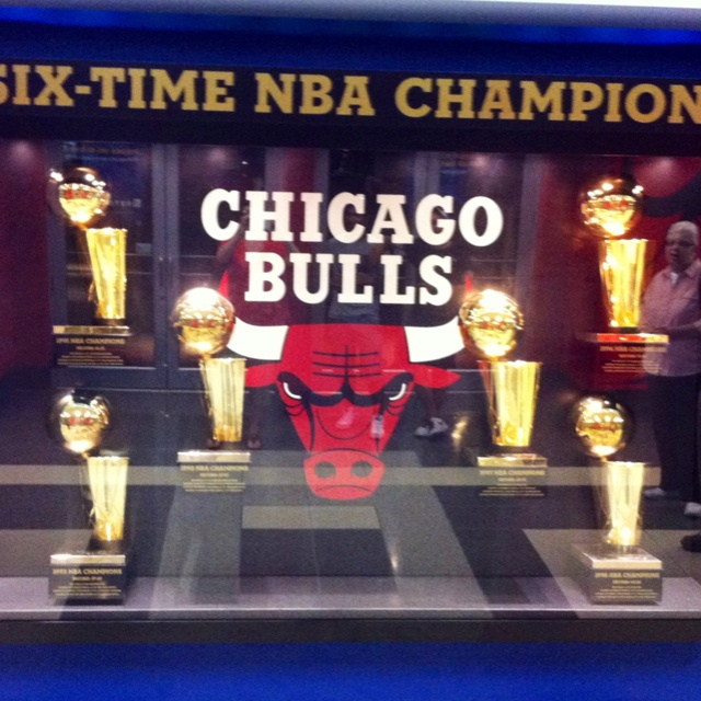 Crossed off list:  Witness the Chicago Bulls win an NBA Championship (six times!)