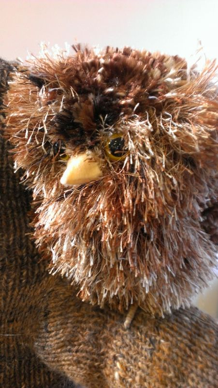 Tawny Frogmouth by Anne Moore