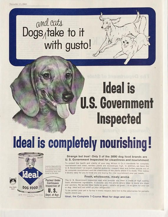 Dachshund Dog Vintage Ideal Dog Food Advertisement From 1961 This