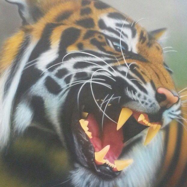 Tiger Airbrush Artwork Airbrushed by Allysha Taylor