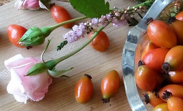 W zaciszu posesji rośnie sobie Rosa Rugosa, nie tylko piękna, ale i niesamowicie zdrowa, ponieważ jest jednym z najbogatszych źródeł witaminy C oraz A, B, P, K i flawonoidów. Posiada prześliczne karmazynowe kwiaty o zwartym pokroju i silnym różanym zapachu. Jesienią kwiaty zamieniają się w atrakcyjne pomarańczowo-czerwone owoce, z których robię najczęściej soki i syropy na zimę.