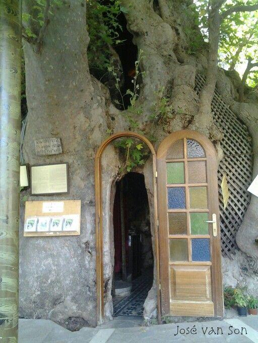 Door from the chapel Panagia (Virgin Mary) Plataniotissa near Kalavryta Greece in old Plane tree