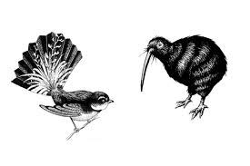 Birds of New Zealand - the Fantail and the Kiwi