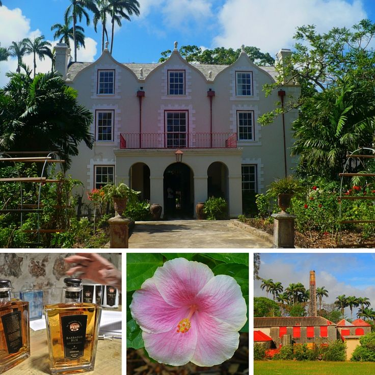 St.Nicholas Abbey #Barbados  Sugar plantation & rum distillery, historic home and tropical gardens await at http://barbados.org/nicabbey.htm