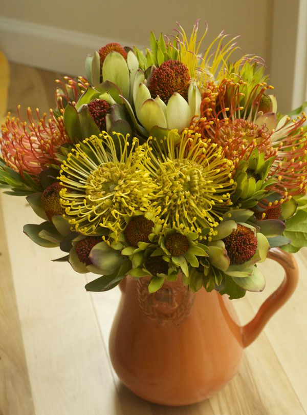 Flower Arrangement With Pincushion Protea And