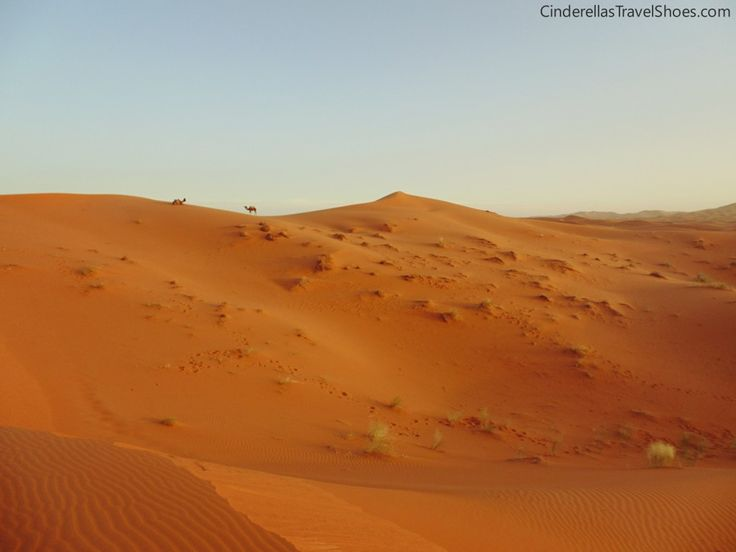 Sahara desert after sunrise