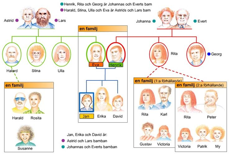 Swedish vocabulary - family - svenska ord - familj 1