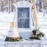 Close up of Vintage Dresser Cake Table with Birch and Gold Cake, Chalkboard and Moss in the snow