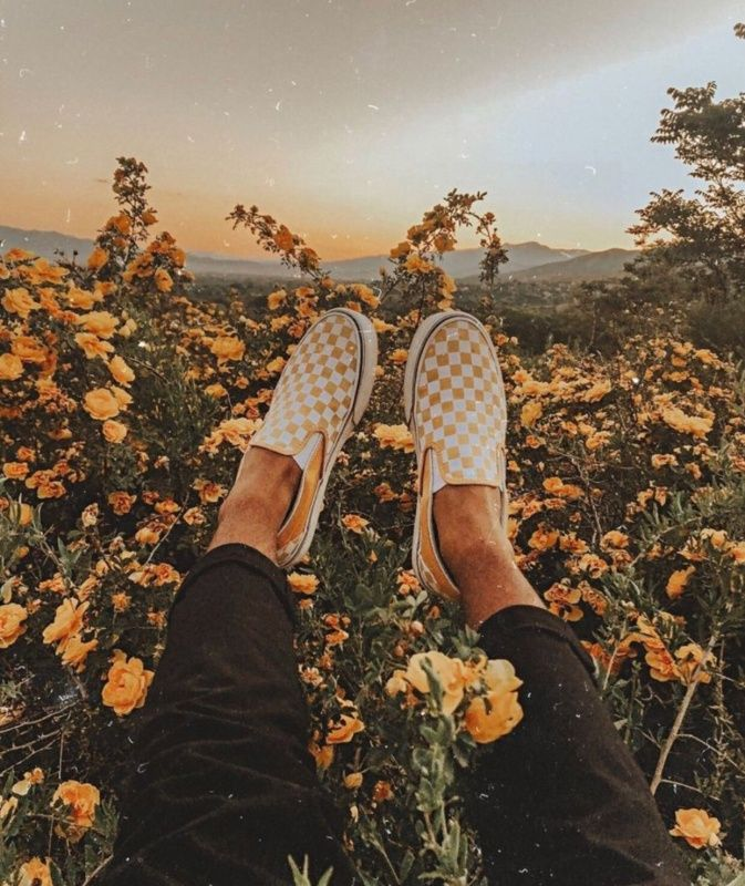 Vsco Summerr Vibezz Floral Flowers Yellow Vans With Images