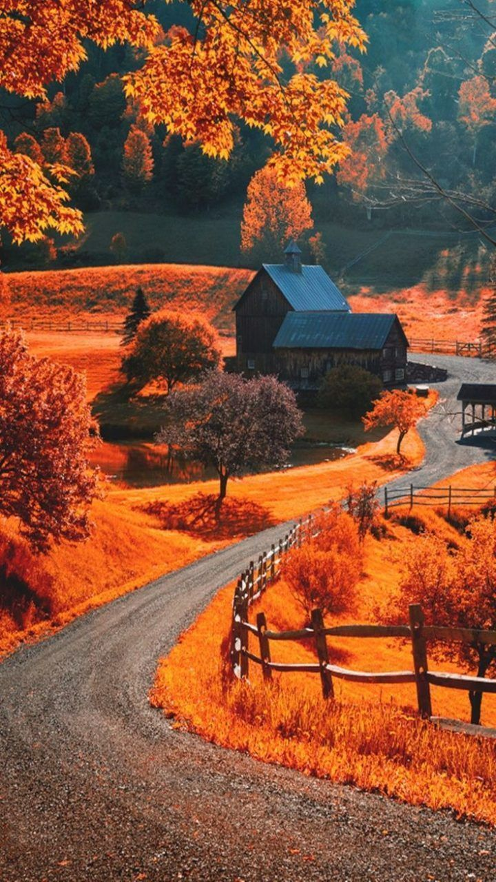 Fall Wallpaper Hd Hupages Download Iphone Wallpapers Falliphonewallpaper Fallwallpapers Fall Wallpap In 2020 Autumn Landscape Fall Wallpaper Winter Landscape