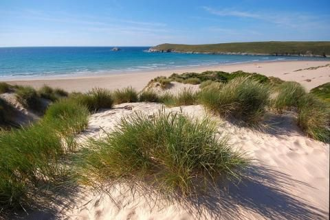 Top walks to enjoy in August | Visit Cornwall