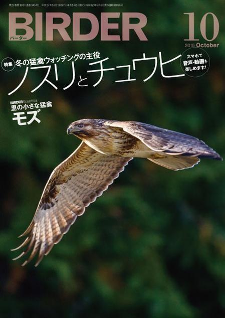 9月16日発売【#BIRDER(バーダー)2015年10月号|冬の猛禽ウォッチングの主役 ノスリとチュウヒ http://amzn.to/1MaxxSi】多様な外見とユニークな生態など、知る人ぞ知る魅力にあふれた彼らの「真の姿」を紹介!