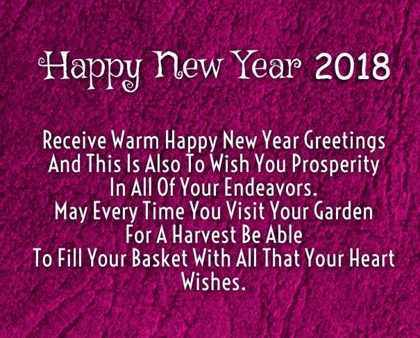 High Quality Happy New Year 2018 Warm Wishes