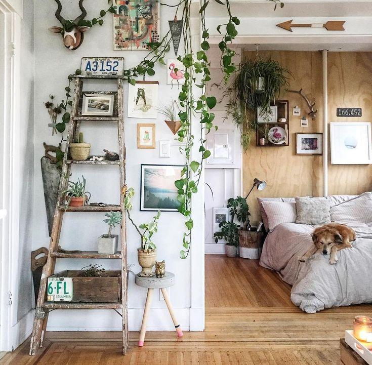 vintage bedroom ideas with plants Best 25+ Garden shelves ideas on Pinterest | Garden ideas with pallets, Plant shelves outdoor