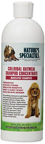 Natures Specialties Colloidal Oatmeal Pet Shampoo 16Ounce ** Be sure to check out this awesome product.