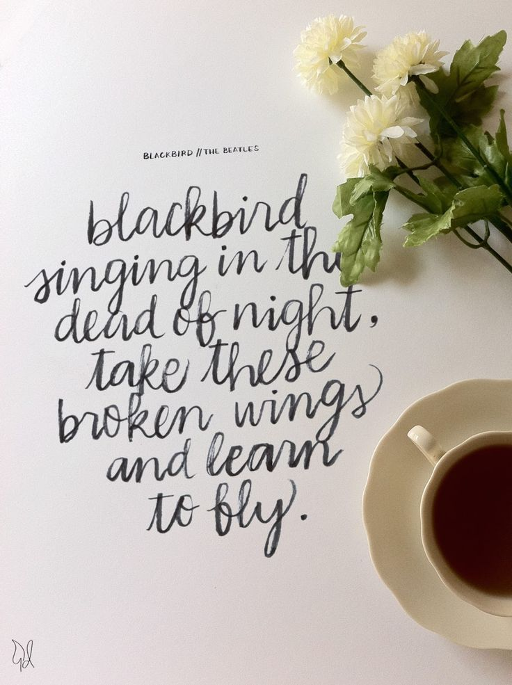 Blackbird singing in the dead of night, take these broken wings and learn to fly. - The Beatles