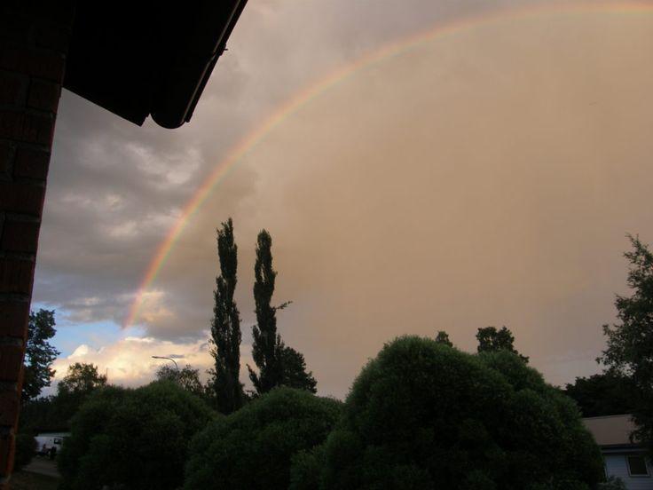 Regnbågen - Pimpinella.org