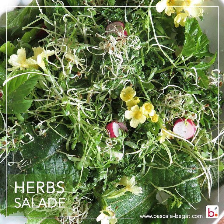 Une salade d' #herbes sauvages et du jardin : rien de mieux pour la forme ! et en plus c'est #vegan  J'adore ces salades d'#herbes sauvages et du jardin. C'est au printemps la meilleure saison pour les faire et quelle concentré d'énergie et de vitamines. ici Des #primevères sauvages (feuilles et fleurs)  du cerfeuil de la cressonnette des #grainesgermees d'alfalfa et de l'aegapode du Jardin avec quelques tranches de radis... un peu de sel de poivre et d'huile d'olive et #miam...   I like…