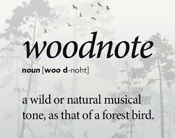 Woodnote... a wild or natural musical tone as that of a forest bird