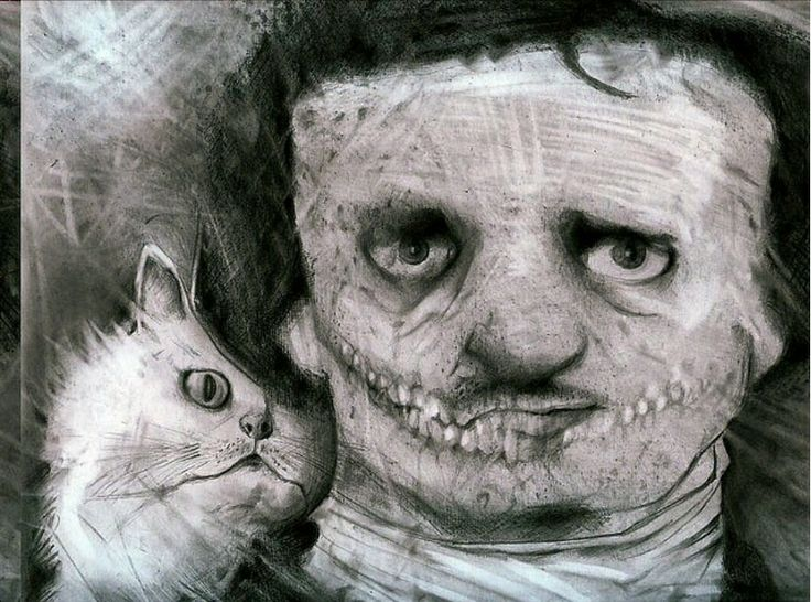 Cats and Edgar Allan Poe are very possibly  my two favourite things in the world. So this picture appeals to me greatly.