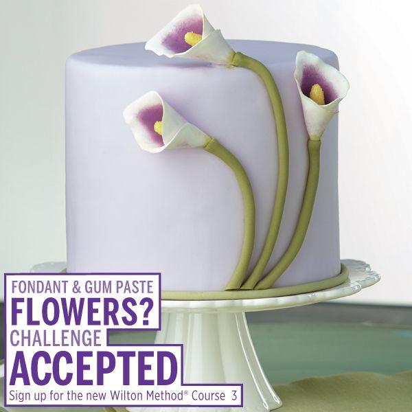 Wilton Cake Classes Hemet Ca : 152 best The Wilton Method images on Pinterest