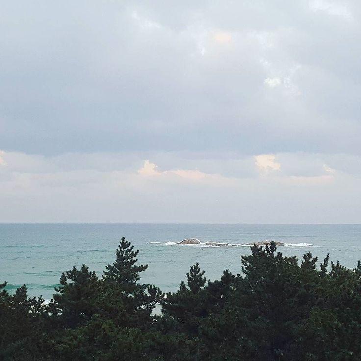 Come back home. But business trip at Gangneung #sea #gangneung #peaceful #beautiful #lakaisandpine