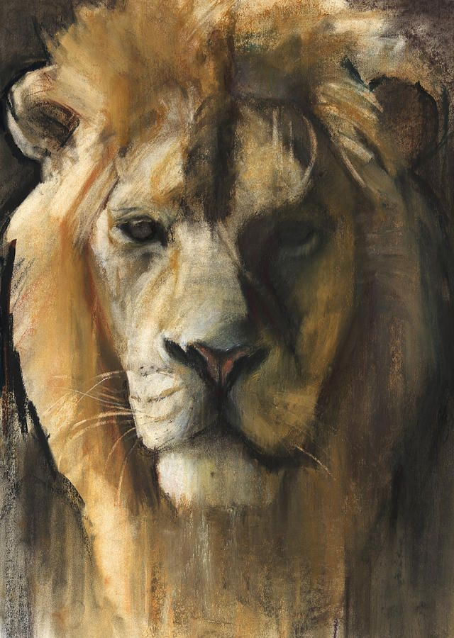 Lion Painting - Asiatic Lion by Mark Adlington
