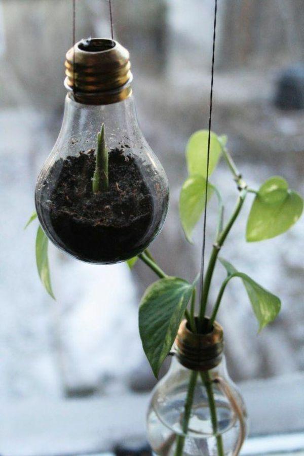 DIY Deko Glühbirnen erdboden pflanzen