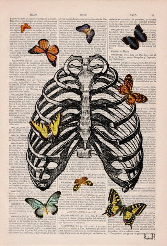 خلفيات Art Collage Wall Book Art Art Inspiration