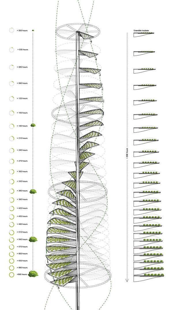 Urban Vertical Farming: Generative System for a Vegetable Growing Infrastructure - eVolo | Architecture Magazine #urbanfarmingideas