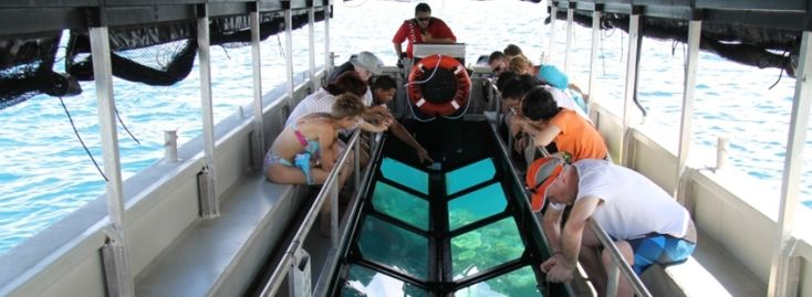 Glass bottom boat on the outer barrier reef