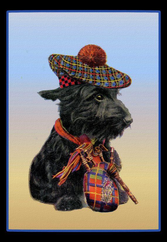 Scottish Terrier in Tam O'Shanter Refrigerator Magnet - FREE US SHIPPING on Etsy, $4.75