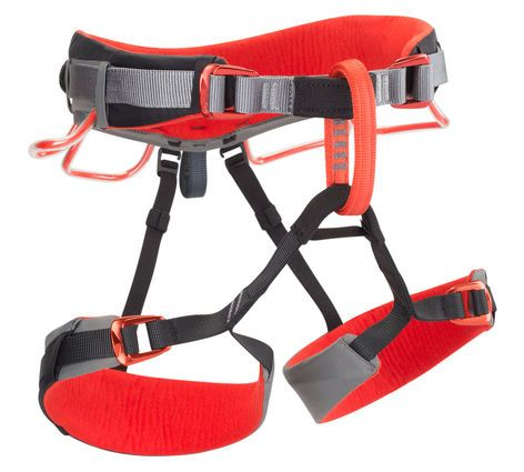 Momentum DS Harness,