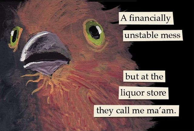 Troubled Birds Archive Funny Birds Mincing Mockingbird Weird Birds