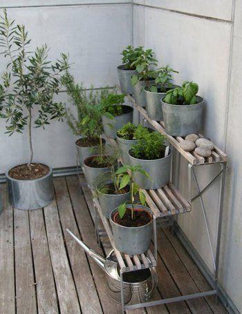 モダンな雰囲気のベランダには、スチールの骨組みの棚を。鉢植えはブリキ、じょうろはステンレスと、シルバーカラーで統一して、洗練された雰囲気を演出します。