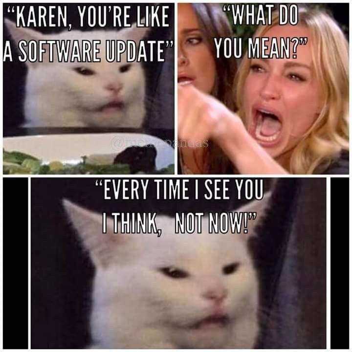 Karen Memes Karen Memes Really Funny Memes Jokes Pics