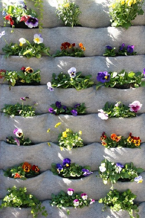 A fabric planter is easy to maintain and looks great for Easy to maintain flowers and plants