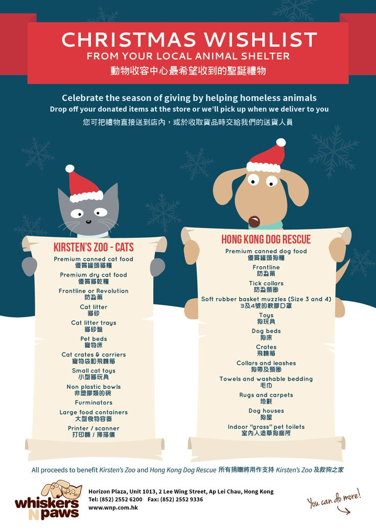 Christmas Wishlist From Your Local Animal Shelter Animal Shelter Fundraiser Animal Shelter Animal Shelter Donations