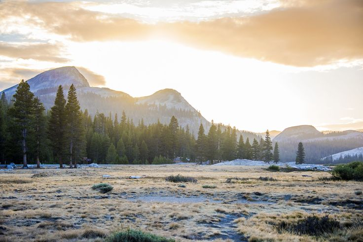 Toulumne Meadows - Yosemite
