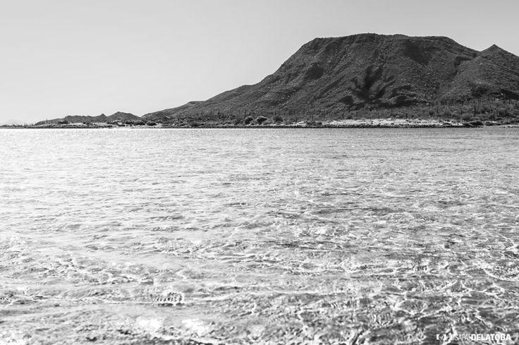 Bay in black and White #josafatdelatoba #cabophotographer #loscabos #bajacaliforniasur #sea #mexico #blackandwhite
