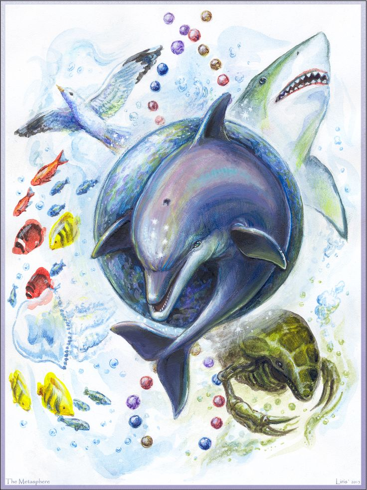 The Metasphere.  Ecco the Dolphin - The Tides of Time