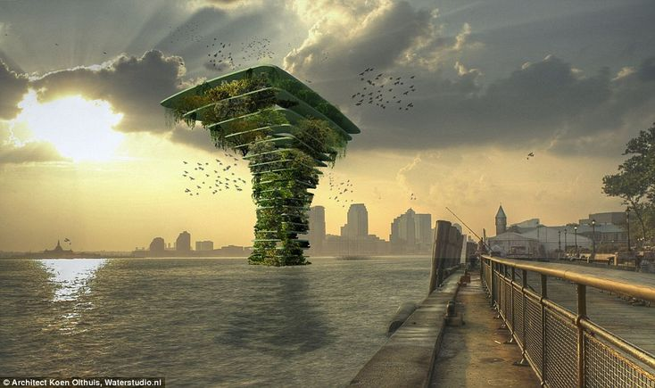 Urban future: The Sea Tree offshore nature park will be a haven for wildlife and will address the rise in pollution