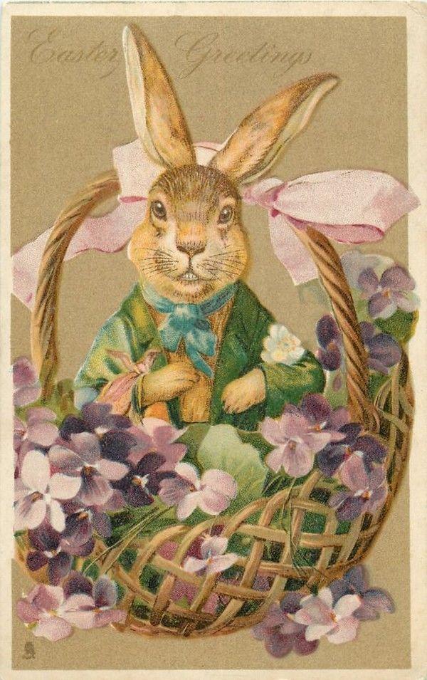 Зайцы в открытках, для