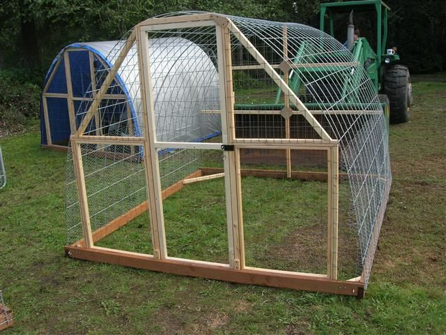 Best 25 hoop house chickens ideas on pinterest cattle for Cheap chicken tractor